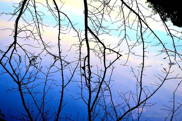 Rockdale County Photograph - Reflections In Blue by Tara Potts
