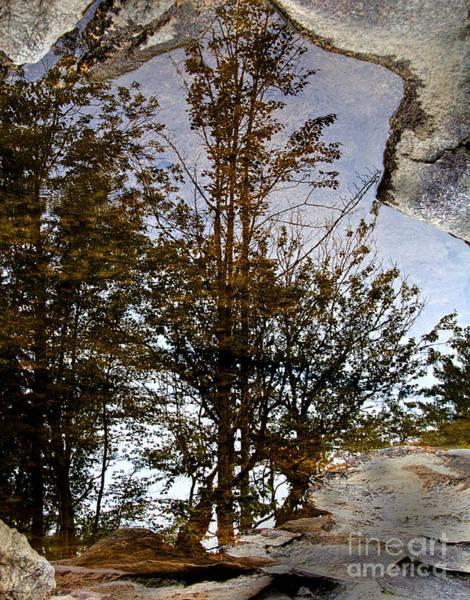 Photograph - Reflections by Jemmy Archer