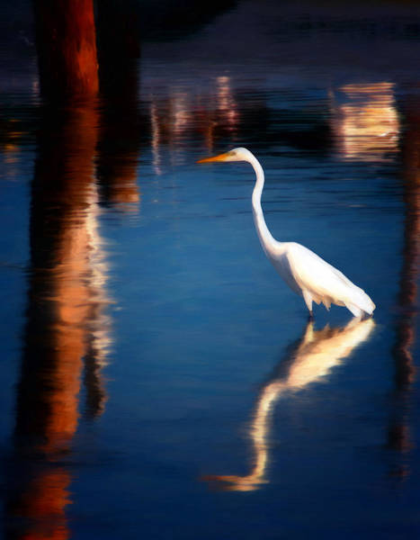 Water Foul Painting - Reflections by Michael Pickett