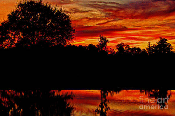 Photograph - Reflections Of A Sunset by Dave Bosse