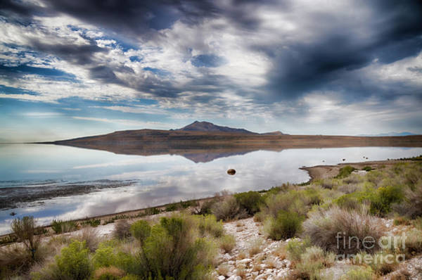Photograph - Reflections Of Antelope Island by Donna Greene