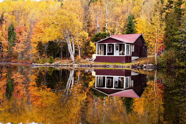 Photograph - Reflections Of Autumn  by U Schade