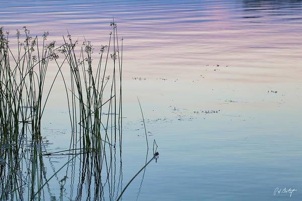Madawaska Lake Photograph - Reflections Of Dusk by Phill Doherty