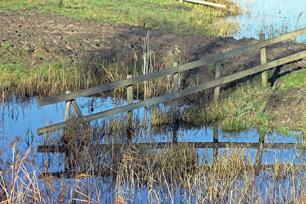 Photograph - Reflections Of A Fence by Tony Murtagh