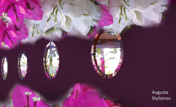 Digital Art - Reflections Of Flowers by Augusta Stylianou