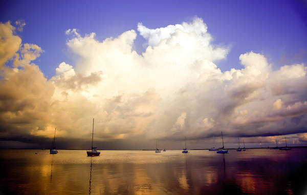 Wall Art - Photograph - Reflections Of Key Largo by Karen Wiles