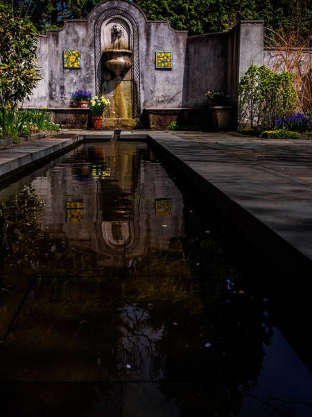 Photograph - Reflections Of The Mind by Louis Dallara