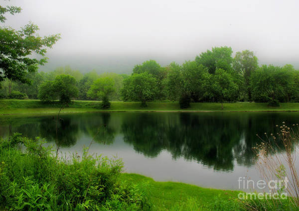 Photograph - Reflections Of The Shire by Mark Miller