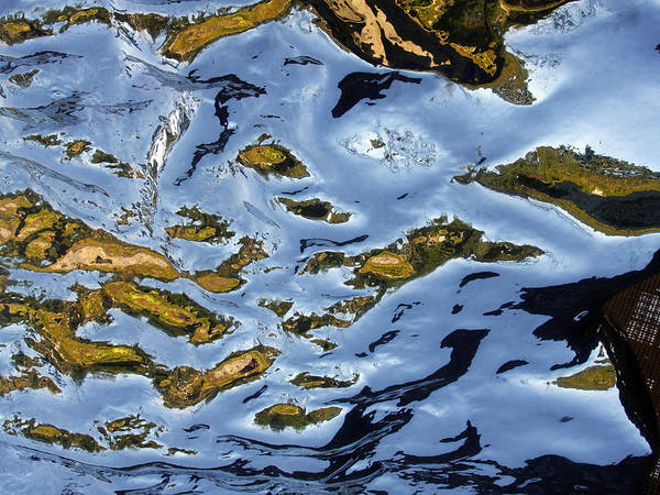 Photograph - Reflections On Artificial Rock I by Rick Locke