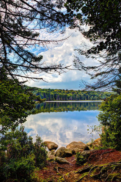 Photograph - Reflections On Bubb Lake In The Adirondacks by David Patterson