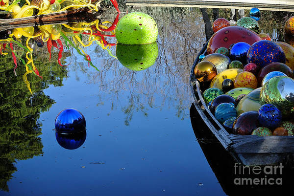 Photograph - Reflections by Paul Quinn