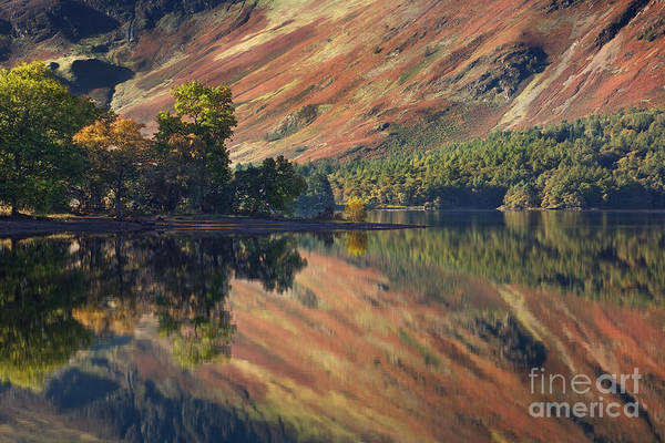 Lake District Wall Art - Photograph - Derwent Water Reflections by Rod McLean