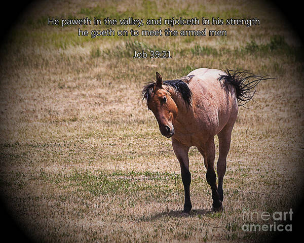 Crazy Horse Photograph - Rejoice In His Strength by Janice Pariza