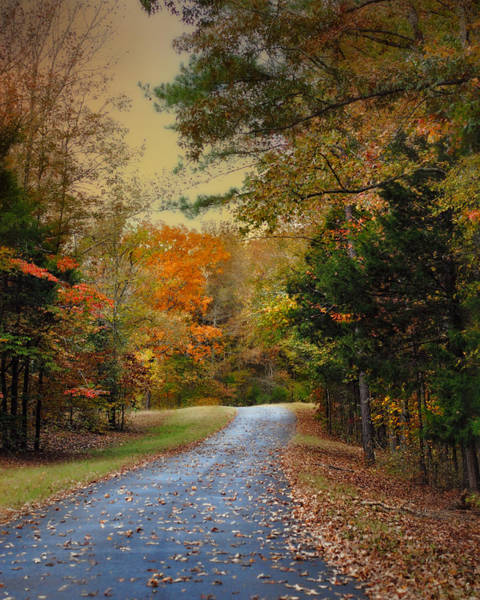 Photograph - Rekindled Spirit - Autumn Landscape Scene by Jai Johnson