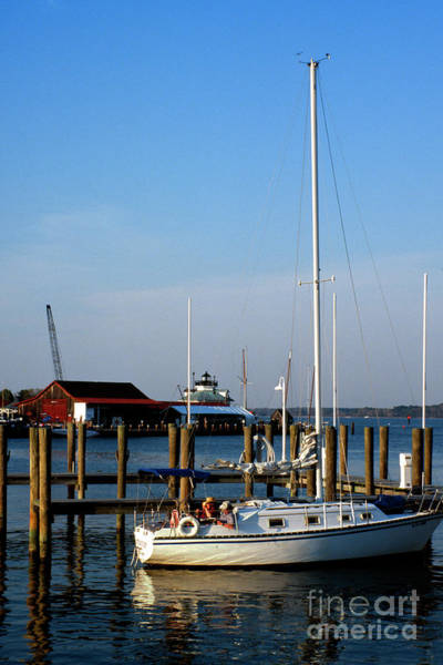 Photograph - Relaxing At The Dock In Saint Michaels Maryland by William Kuta