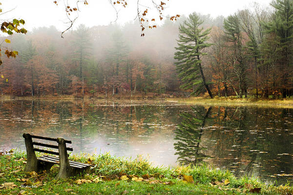 Photograph - Relaxing Autumn Beauty Landscape by Christina Rollo