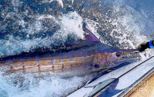 White Marlin Wall Art - Photograph - Release by Carey Chen