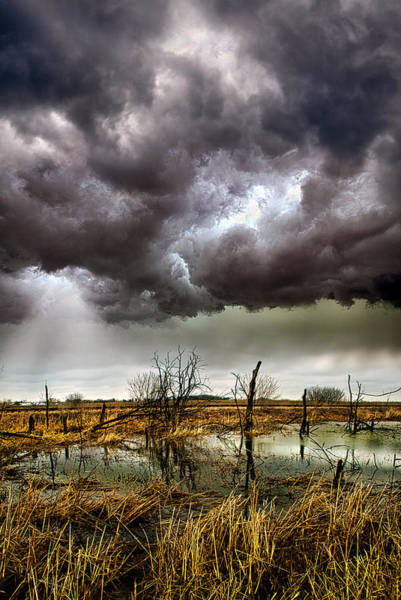 Summer Storm Photograph - Relentless by Phil Koch