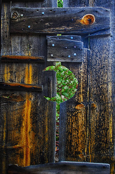 Outhouse Photograph - Relief by Camille Lopez
