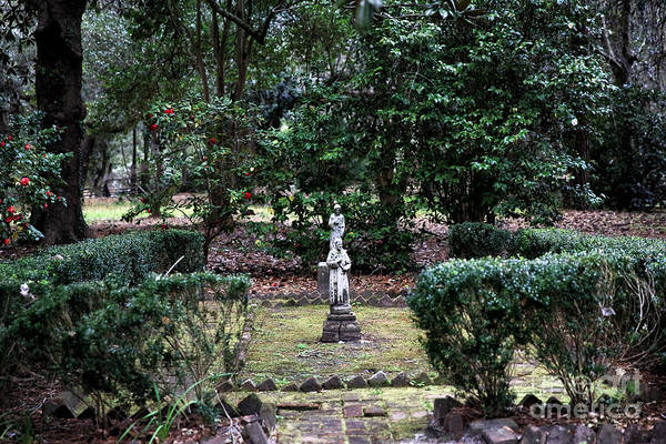 Photograph - Religion In The Garden by John Rizzuto