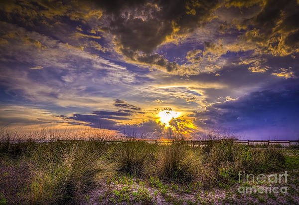 Clearwater Photograph - Remember This Day by Marvin Spates