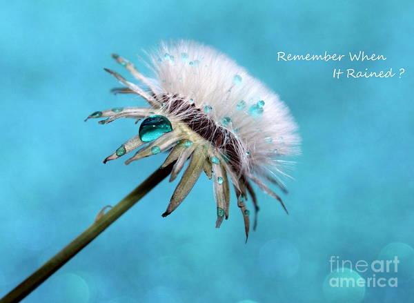 Saying Photograph - Remember When It Rained? by Krissy Katsimbras