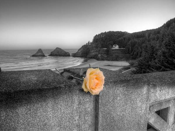 Photograph - Remembrance by HW Kateley