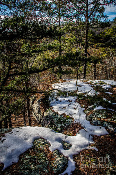 Photograph - Remnants Of Winter by Jim McCain