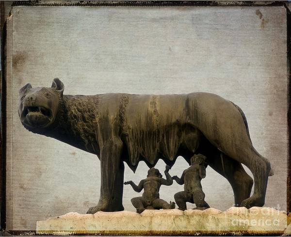 Wall Art - Photograph - Remus And Romulus by Bernard Jaubert