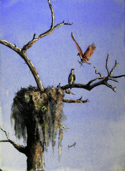 Painting - Repairing The Nest by Sam Sidders