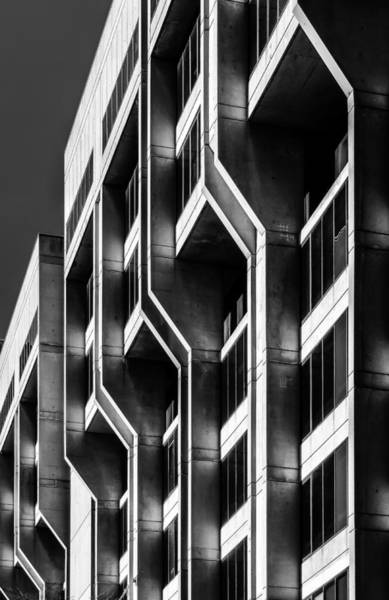 Photograph - Repetition by Robert Mitchell
