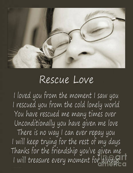 Photograph - Rescue Love Adoption by Andee Design