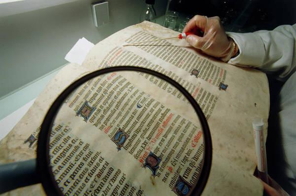 Manuscript Photograph - Researcher Tests For Mould On Medieval Manuscript by Klaus Guldbrandsen/science Photo Library