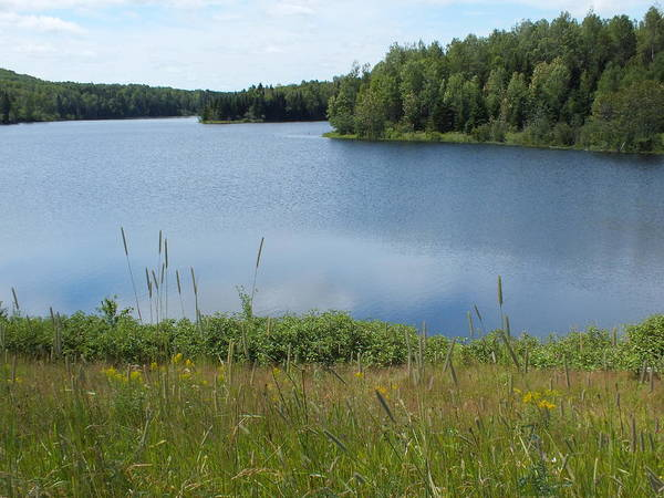 Aroostook County Photograph - Reservoir 1 by Gene Cyr