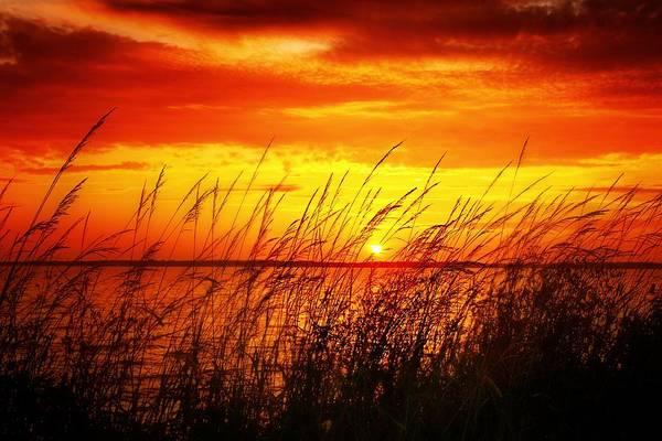 Photograph - Reservoir Sunset 3 by Jim Albritton