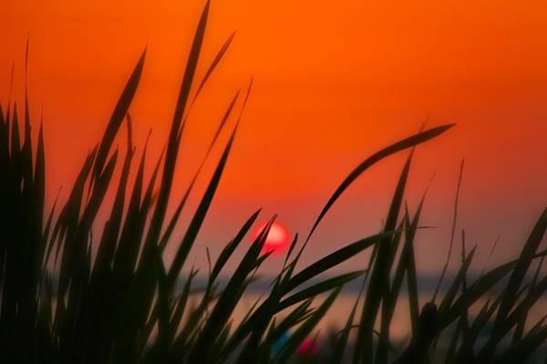 Photograph - Reservoir Sunset by Jim Albritton