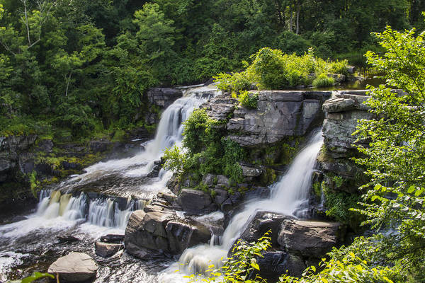 Wall Art - Photograph - Resica Falls  by Dave Sandt