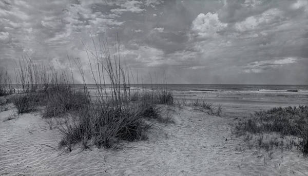 Saint Augustine Photograph - Resilient Presence by Betsy Knapp