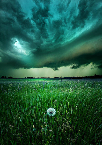 Summer Storm Photograph - Resolute by Phil Koch