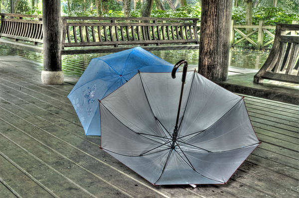 Photograph - Respite From The Rain 2  Hangzhou China by Rob Huntley
