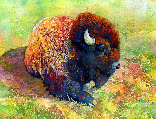Colorful Animal Painting - Resting Bison by Hailey E Herrera