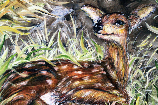 Bambi Mixed Media - Resting In The Sun by Martin Way