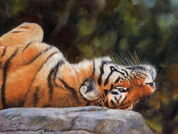 Bengal Tiger Painting - Resting Tiger Painting by David Stribbling
