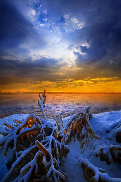 Photograph - Restless Shores by Phil Koch