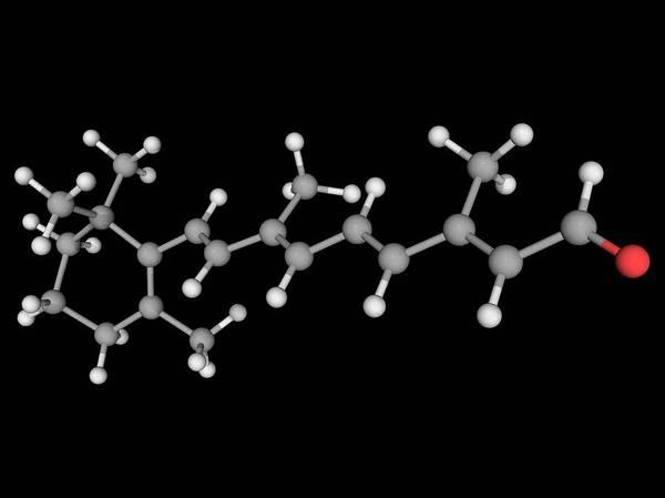 Compound Photograph - Retinal Vitamin A Molecule by Laguna Design/science Photo Library