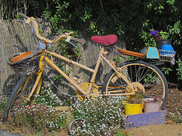 Pyrography - Retired Bicycle by Tony and Kristi Middleton