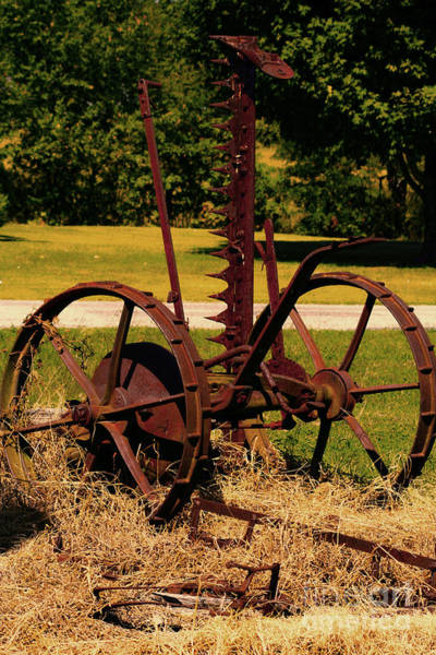Photograph - Retired Farm Equipment by Lesa Fine