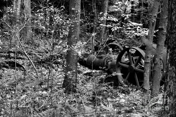 Photograph - Retired Machines 16 - Lost In The Woods by E B Schmidt