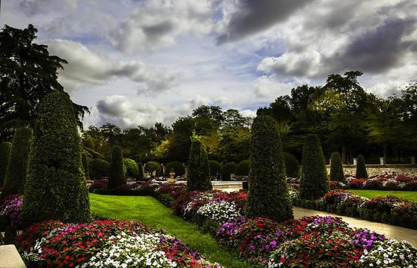 Wall Art - Photograph - Retiro Park Garden - Madrid - Spain by Madeline Ellis