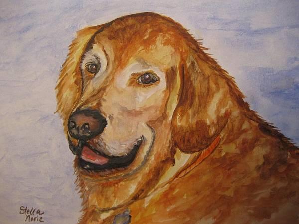 Painting - Retriever In His Golden Years by Stella Sherman